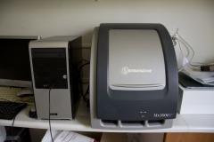 Realtime PCR